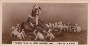 There Was An Old Woman Who Lived In A Shoe Dog German Cigarette Card