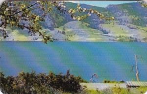 Canada Penticton Lake Scene With Apple Blossoms