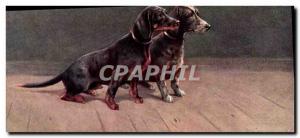 Old Postcard Basset Hound Dogs