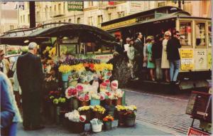 Flower Stand San Francisco CA California Streetcar Unused Vintage Postcard D36