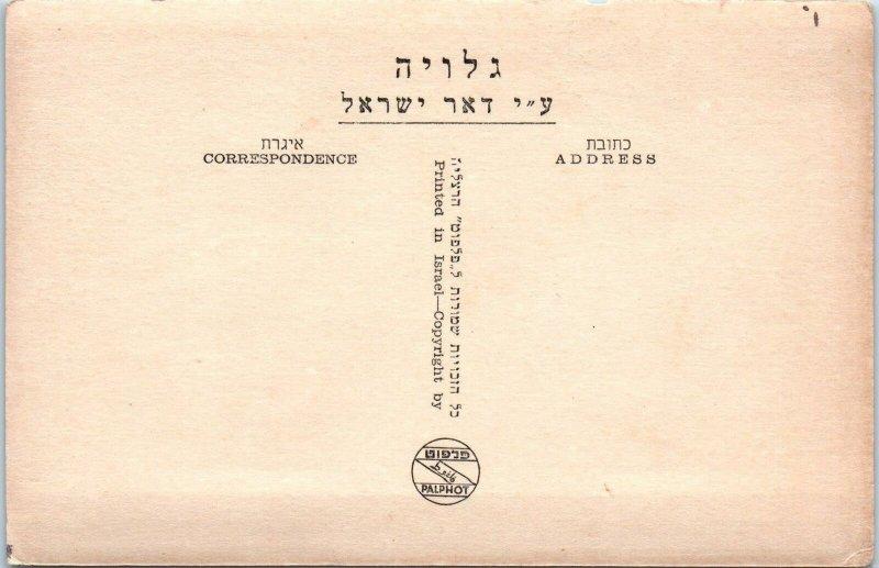 HAIFA, Israel   STREET   SCENE   c1940s  Vehicles   Continental Size   Postcard
