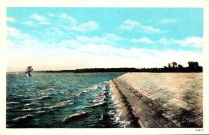 Virginia Jamestown Island Showing Lone Cypress Tree and Sea Wall