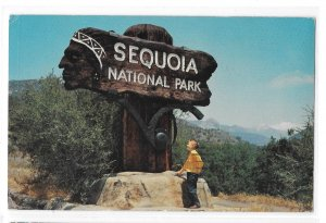 Sequoia National Park Carved Redwoeed Entrance SignVintage CA Postcard