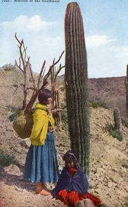 Natives of the Southwest