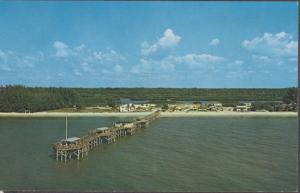 INDIAN ROCKS BEACH, view of the South Shore Fishing Pier at 196th , 1950s