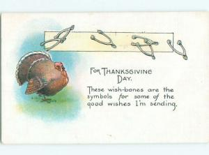 Divided-Back THANKSGIVING SCENE Great Postcard AA0472