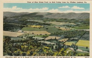 VIRGINIA, 1910-20s; Blue Grass Trail, in Rich Valley from Big Walker Lookout