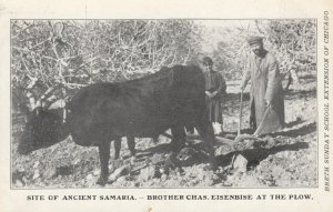SAMARIA , Israel , 00-10s ; Farmer