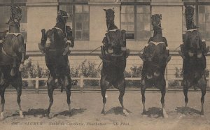 Saumer Horse Military Academy Cavalry Antique French Postcard