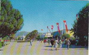 A View Of International Fair Grounds From Lozan Gate, Izmir, Turkey, 1940-1960s
