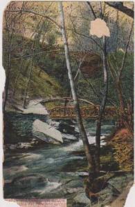 Foot Path & Glen Below Minnehaha Falls, Minneapolis Minnesota 1908