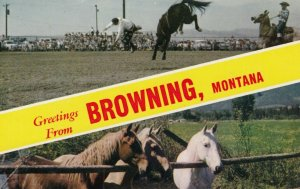 BROWNING , Montana , 50-60s; Greetings, Rodeo, Horses