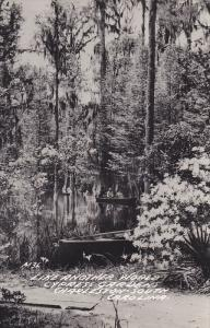 RP, Cypress Gardens, Boating, Charleston, South Carolina, 1930-1950s
