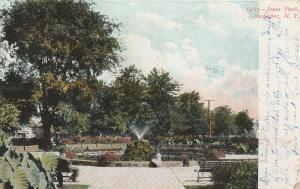 Jones Park Garden and Fountain - Rochester, New York - pm 1906 - UDB