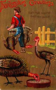 Thanksgiving With Turkey and Farmer