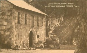 California Buena Vista Vineyard Count Haraszthy's Cellar 1920s Postcard 20-2776