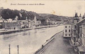 Belgium Dinant Panorama en amont de la Meuse 1919