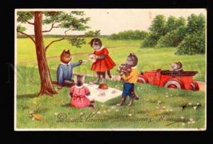 047580 Dressed KITTENS Picnic TEA CEREMONY vintage color PC