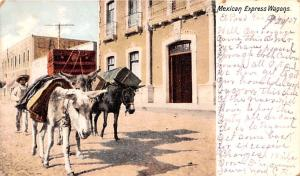 Mexico Old Vintage Antique Post Card Mexican Express Wagons 1907
