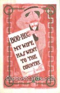 Artist Walter Wellman Postcard Post Card Old Vintage Antique unused