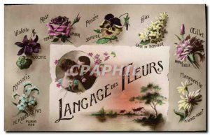 Old Postcard Fantasy Flowers of Language