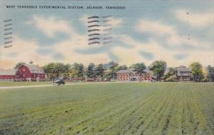 Tennessee Jackson West Tennessee Experimental Station 1951