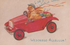 Polish Racing Car Red Classic Duck Cars Poland Christmas Postcard