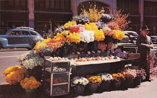 Flower Stand San Francisco California