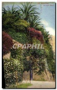 Old Postcard Menton floral corner