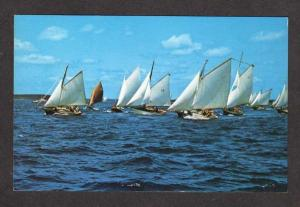 ME Sailboats Sloops Races Friendship Maine Postcard