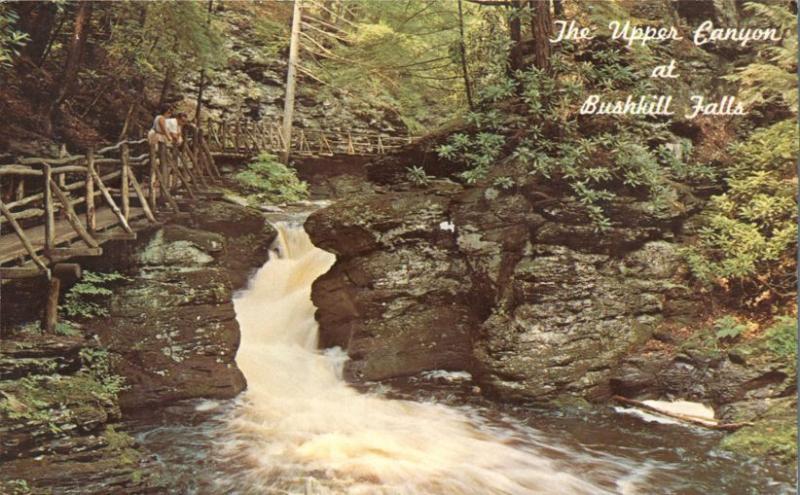 Upper Canyon of Bushkill Falls - Pocono Mountains PA, Pennsylvania