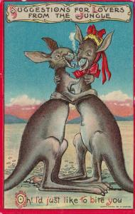 Couple of Kangaroos hugging, Oh! I'd just love to bite you, PU-1909