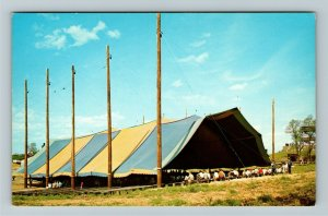 Onsted MI- Michigan, Frontier City, The Big Top, Vintage Chrome Postcard