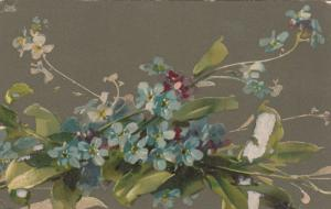 KLEIN : Forget-me-nots , 1900-10s ; TUCK 6125