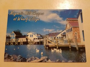 Magnetic Hill Shoppes at Wharf Village, New Brunswick Canada Postcard