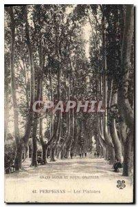 Old Postcard Perpignan Platanes