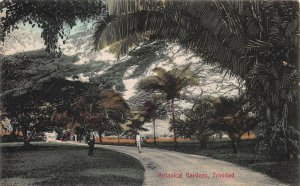 Botanical Gardens, Trinidad, Early Postcard, Unused