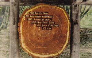 California Mill Balley The Age Of Ther California Redwood 1950