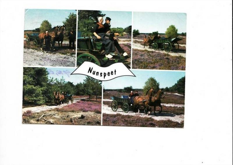 B48149 Nunspeet horses with carriage chevaux avec charets