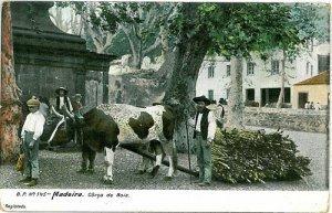 02390 ETHNIC vintage postcard: PORTUGAL - MADEIRA