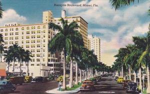 Florida Miami Biscayne Boulevard 1950