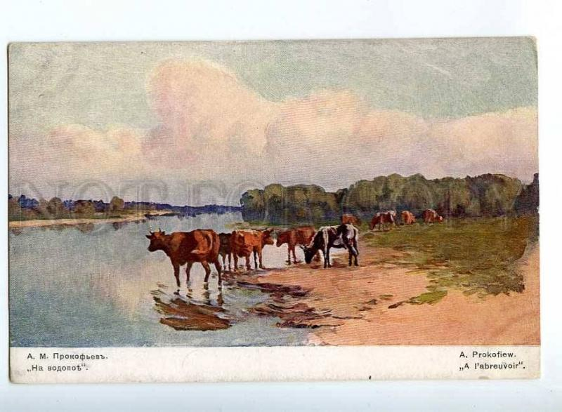 224339 RUSSIA PROKOFIEV At watering cows St.Eugenie postcard