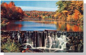 Beautiful New Hampshire/NH Postcard, Fabulous Fall Foliage