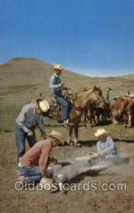 Branding Time Western Cowboy, Cowgirl Postcard Postcards  Branding Time