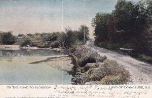 LAND OF EVANGELINE, Nova Scotia, Canada, PU-1906; On The Road To Blomidon