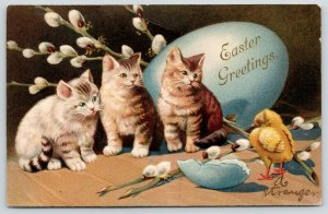 Easter Cats~Three Tiger Stripe Kittens Watch Chick Hatch~Blue Egg~Emboss~Germany