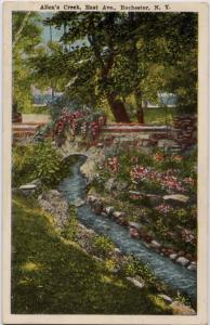 Flowers along Allens Creek near East Ave - Rochester, New York - WB