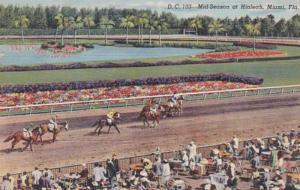 Florida Miami Mid Season Horse Racing At Hialeah 1947 Curteich