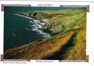 Postcard Isle of Man Ellan Vannin Road of the Gull