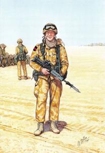 Military Art Postcard Coldstream Guards Guardsman, Iraq 1991 #29-5